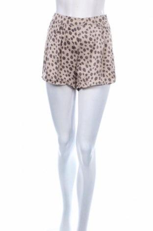 Γυναικείο κοντό παντελόνι Kling