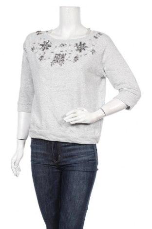Γυναικεία μπλούζα Kaos, Μέγεθος S, Χρώμα Γκρί, Βαμβάκι, Τιμή 9,87€