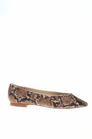 Γυναικεία παπούτσια Parfois, Μέγεθος 36, Χρώμα Πολύχρωμο, Δερματίνη, Τιμή 12,16€