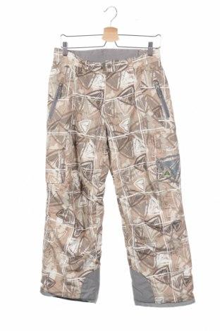 Παιδικό παντελόνι για χειμερινά σπορ Fire Fly, Μέγεθος 13-14y/ 164-168 εκ., Χρώμα Πολύχρωμο, Πολυεστέρας, Τιμή 14,81€