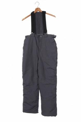 Παιδικό παντελόνι για χειμερινά σπορ The Children's Place, Μέγεθος 15-18y/ 170-176 εκ., Χρώμα Γκρί, Πολυεστέρας, Τιμή 20,36€