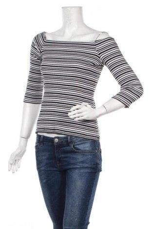 Γυναικεία μπλούζα Dorothy Perkins, Μέγεθος L, Χρώμα Λευκό, Βαμβάκι, Τιμή 11,69€