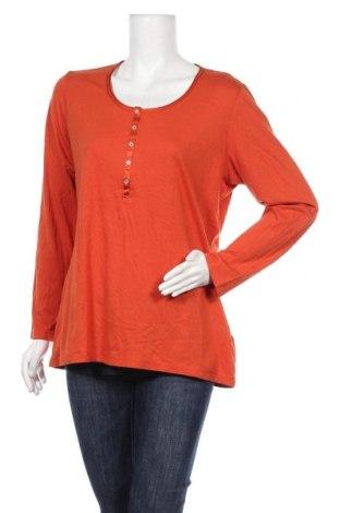 Γυναικεία μπλούζα G.W., Μέγεθος XL, Χρώμα Πορτοκαλί, 97% πολυεστέρας, 3% ελαστάνη, Τιμή 23,38€