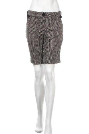 Γυναικείο κοντό παντελόνι Kays, Μέγεθος S, Χρώμα Πολύχρωμο, 55% μαλλί, 45% πολυεστέρας, Τιμή 8,26€