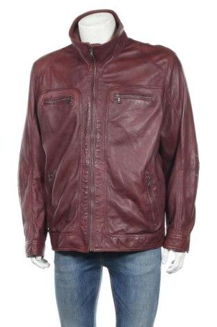 Ανδρικό δερμάτινο μπουφάν Walbusch, Μέγεθος XL, Χρώμα Κόκκινο, Γνήσιο δέρμα, Τιμή 57,15€