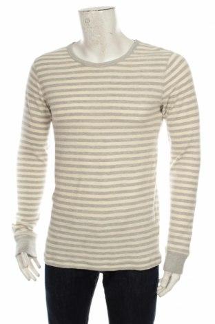 Ανδρική μπλούζα Cottonfield
