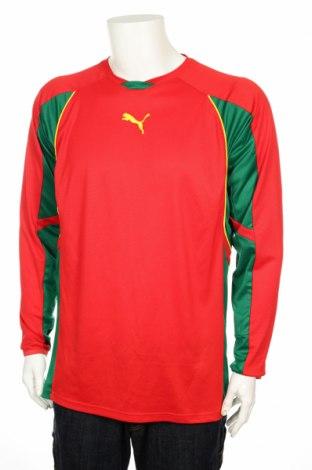 Męska sportowa bluzka Puma