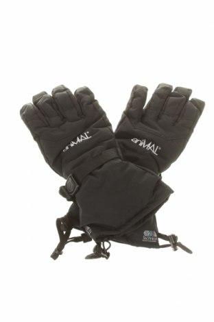 Γάντια για χειμερινά σπορ Hipora