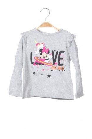 Παιδική μπλούζα Disney, Μέγεθος 2-3y/ 98-104 εκ., Χρώμα Γκρί, 92% βαμβάκι, 8% πολυεστέρας, Τιμή 8,82€