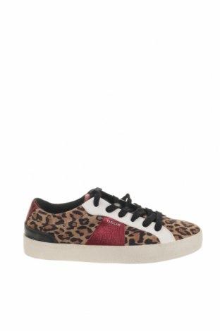 Παιδικά παπούτσια Geox, Μέγεθος 37, Χρώμα Πολύχρωμο, Γνήσιο δέρμα, φυσικό σουέτ, Τιμή 57,60€