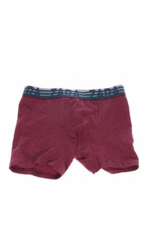 Παιδικά εσώρουχα Zara Kids, Μέγεθος 7-8y/ 128-134 εκ., Χρώμα Κόκκινο, 95% βαμβάκι, 5% ελαστάνη, Τιμή 4,25€