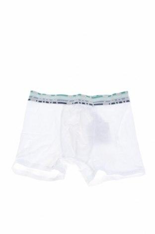 Παιδικά εσώρουχα Zara Kids, Μέγεθος 7-8y/ 128-134 εκ., Χρώμα Λευκό, 95% βαμβάκι, 5% ελαστάνη, Τιμή 4,25€