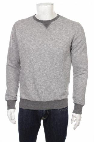 Мъжка блуза Cedar Wood State