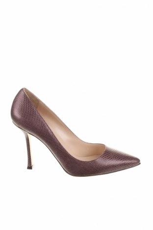 Дамски обувки Sergio Rossi