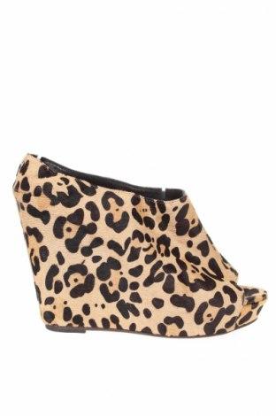 Дамски обувки Steve Madden