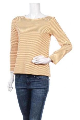 Γυναικεία μπλούζα Hallhuber, Μέγεθος M, Χρώμα Κίτρινο, 95% βαμβάκι, 5% πολυαμίδη, Τιμή 13,51€