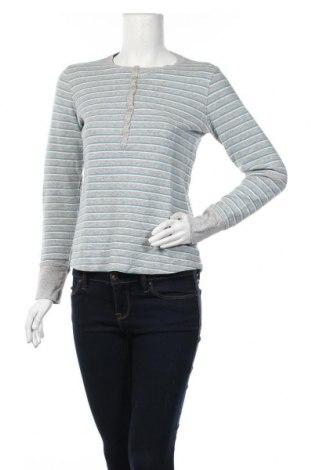 Дамска блуза L.L. Bean, Размер M, Цвят Сив, 98% памук, 2% еластан, Цена 8,93лв.