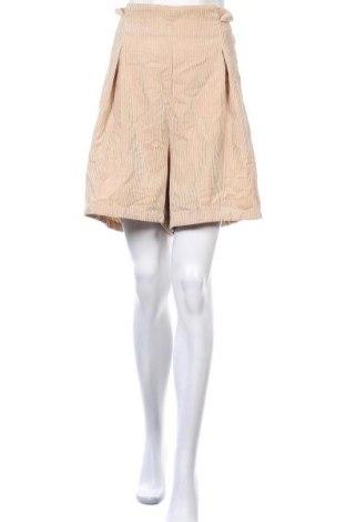 Γυναικείο κοντό παντελόνι Pretty Little Thing, Μέγεθος XL, Χρώμα  Μπέζ, 90% πολυεστέρας, 10% πολυαμίδη, Τιμή 7,79€