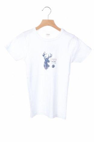 Παιδικό μπλουζάκι Absorba, Μέγεθος 11-12y/ 152-158 εκ., Χρώμα Λευκό, Βαμβάκι, Τιμή 7,22€