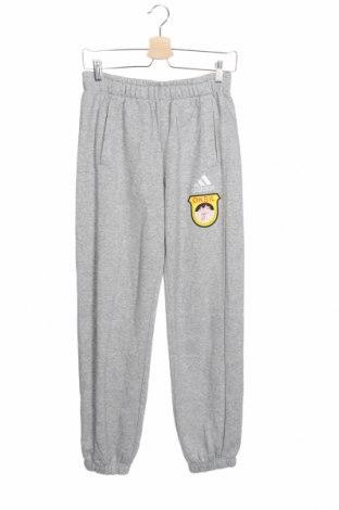 Παιδική κάτω φόρμα Adidas, Μέγεθος 13-14y/ 164-168 εκ., Χρώμα Γκρί, 70% βαμβάκι, 30% πολυεστέρας, Τιμή 12,47€