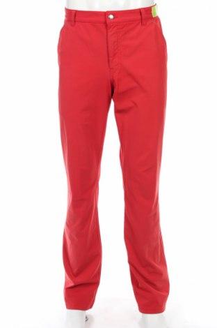Мъжки спортен панталон Alberto