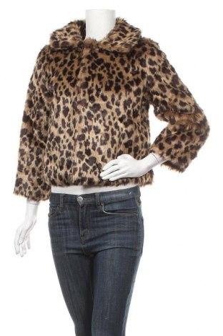 Дамско палто Yumi, Размер S, Цвят Кафяв, Полиестер, Цена 33,32лв.