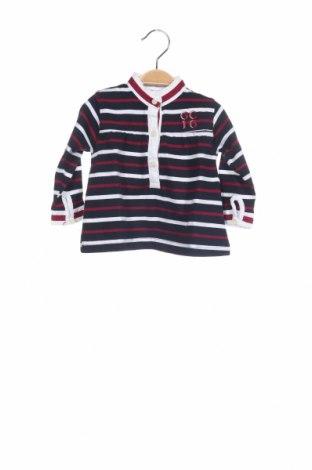 Παιδική μπλούζα Gocco, Μέγεθος 6-9m/ 68-74 εκ., Χρώμα Πολύχρωμο, Βαμβάκι, Τιμή 4,19€