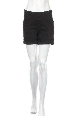 Γυναικείο κοντό παντελόνι εγκυμοσύνης Dorothy Perkins, Μέγεθος S, Χρώμα Μαύρο, 98% βαμβάκι, 2% ελαστάνη, Τιμή 17,78€