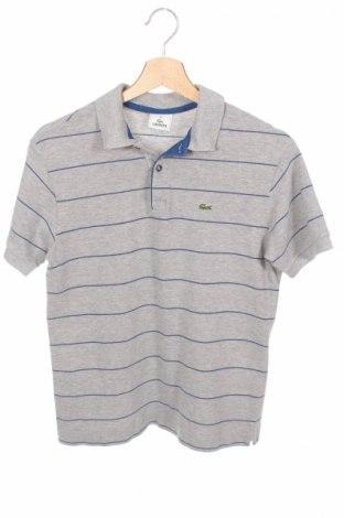 Детска блуза Lacoste