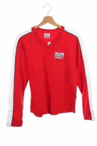 Детска блуза, Размер 12-13y/ 158-164 см, Цвят Червен, Памук, Цена 3,08лв.