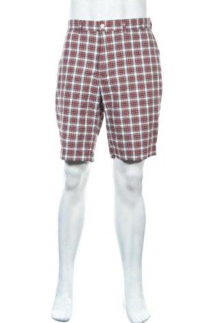 Ανδρικό κοντό παντελόνι Polo By Ralph Lauren, Μέγεθος L, Χρώμα Πολύχρωμο, Βαμβάκι, Τιμή 16,10€