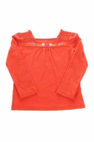 Детска блуза Gymboree