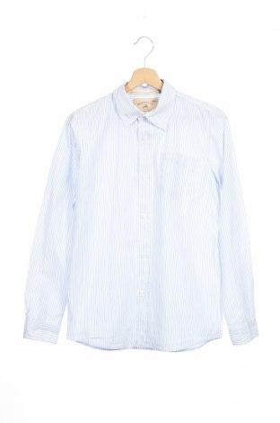Παιδικό πουκάμισο Zara Kids