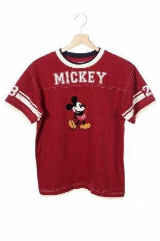 Dziecięcy T-shirt Disneyland