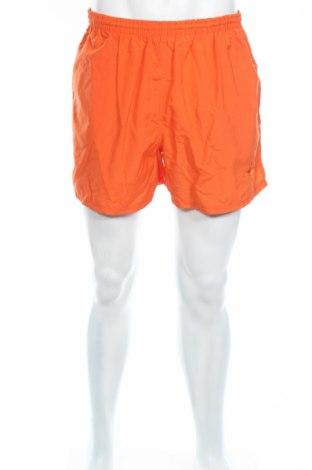 Мъжки къс панталон Arena