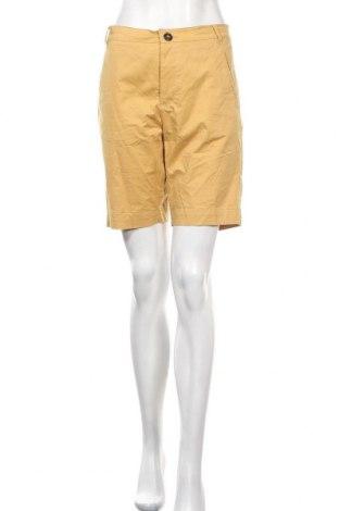 Γυναικείο κοντό παντελόνι Noa Noa, Μέγεθος S, Χρώμα Κίτρινο, 97% βαμβάκι, 3% ελαστάνη, Τιμή 9,42€
