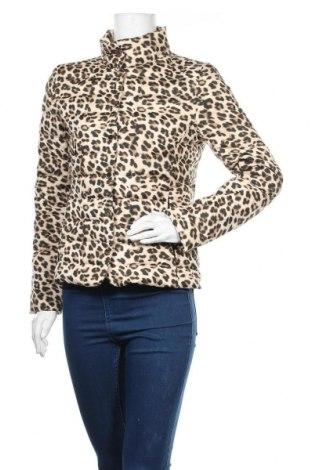 Γυναικείο μπουφάν Hallhuber, Μέγεθος S, Χρώμα Καφέ, Πολυεστέρας, Τιμή 73,39€