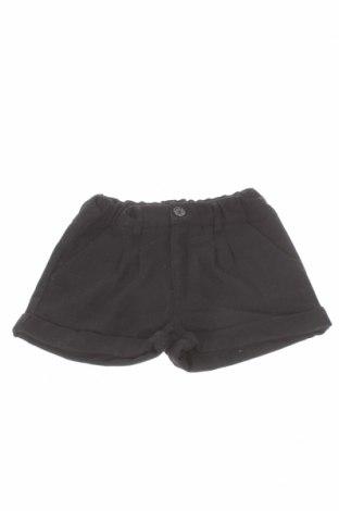 Pantaloni scurți de copii Crash One