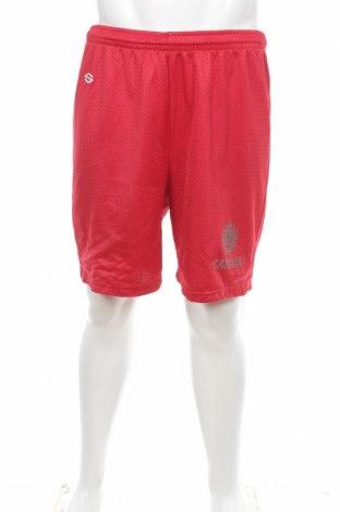 Мъжки къс панталон Saxon