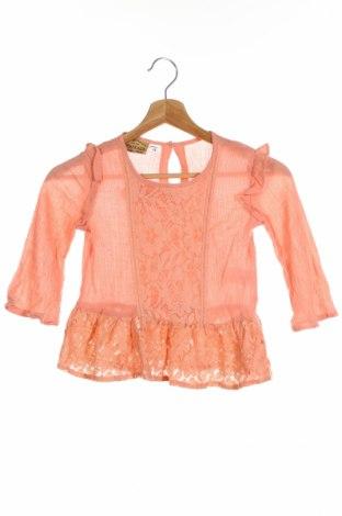 Детска блуза Roebuck & Co.