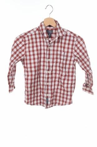 Детска риза Arizona Jean Co, Размер 7-8y/ 128-134 см, Цвят Многоцветен, Памук, Цена 3,75лв.
