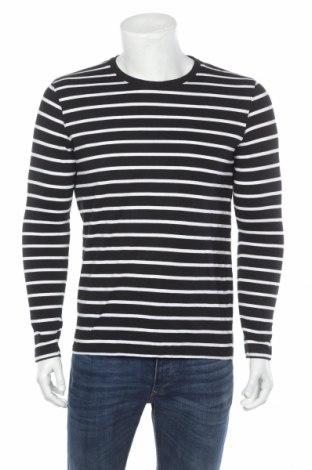 Мъжка блуза Race Marine