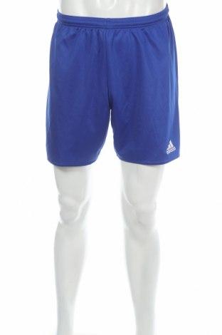 Pánske kraťasy  Adidas