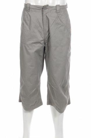 Ανδρικό παντελόνι Boxfresh, Μέγεθος S, Χρώμα Γκρί, Βαμβάκι, Τιμή 7,71€