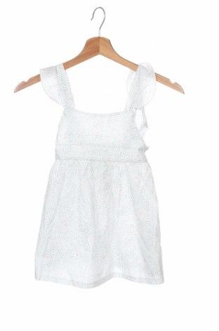 Παιδικό φόρεμα Little Celebs, Μέγεθος 18-24m/ 86-98 εκ., Χρώμα Πολύχρωμο, Βαμβάκι, Τιμή 11,52€