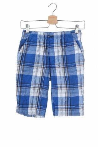 Παιδικό κοντό παντελόνι George, Μέγεθος 10-11y/ 146-152 εκ., Χρώμα Πολύχρωμο, Βαμβάκι, Τιμή 11,04€