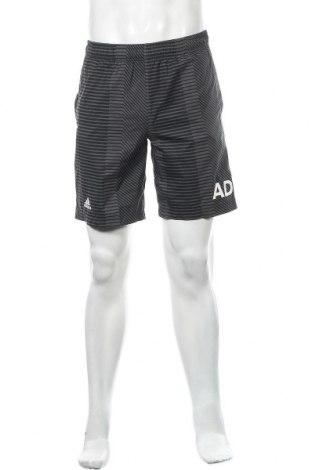 Ανδρικό κοντό παντελόνι Adidas, Μέγεθος M, Χρώμα Γκρί, Πολυεστέρας, Τιμή 18,84€