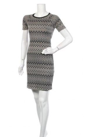 Φόρεμα Dorothy Perkins, Μέγεθος S, Χρώμα Πολύχρωμο, 84% πολυεστέρας, 15% βισκόζη, 1% ελαστάνη, Τιμή 11,86€