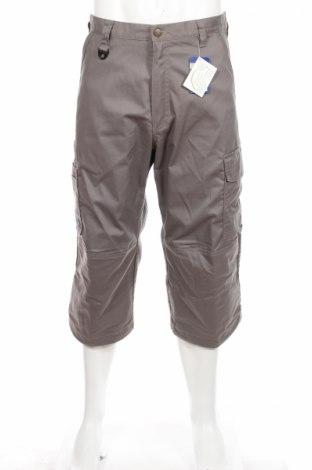 Мъжки панталон Pro Job