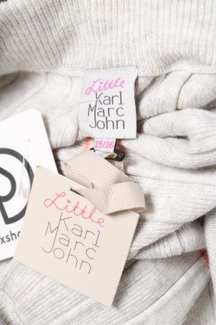 Детска пола Karl Marc John, Размер 14-15y/ 168-170 см, Цвят Сив, 40% модал, 30% памук, 30% полиамид, Цена 4,40лв.